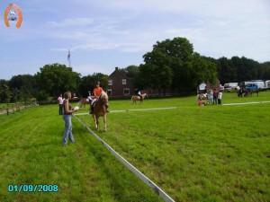 haflingerstaldeflammert.nl-website-20080901-114658-20090209-215712-312503