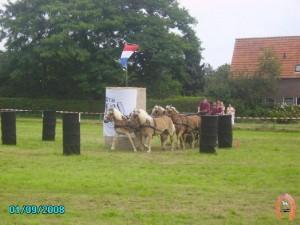 haflingerstaldeflammert.nl-website-20080901-160358-20090209-222316-859378