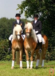 haflingerstaldeflammert.nl-website-20090209-221343-468753