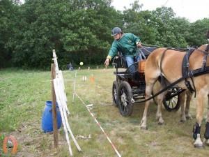 haflingerstaldeflammert.nl-website-20070415-020720-20110530-195324-784140