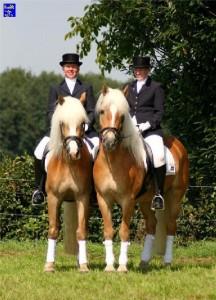 haflingerstaldeflammert.nl-website-20081021-204444-171877