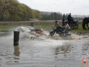 haflingerstaldeflammert.nl-website-20100430-221938-546600