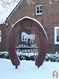 haflingerstaldeflammert.nl-website-20090105-141608-20090209-212255-921877