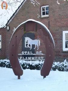 haflingerstaldeflammert.nl-website-20090105-141608-20090209-223113-171878