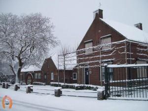 haflingerstaldeflammert.nl-website-20080324-120617-20110104-165655-674795