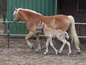 Alonso met moeder Gemma